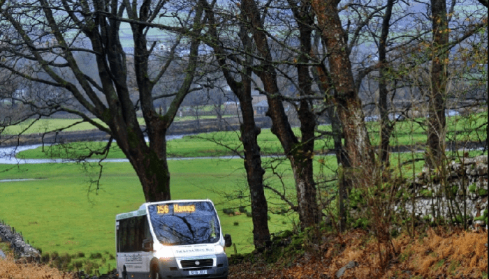Little White Bus 156